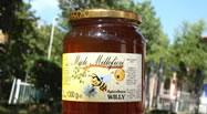 apicoltura miele bed breakfast novafeltria