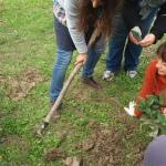 permacultura food forest elena parmeggiani corso sassoerminia valmarecchia